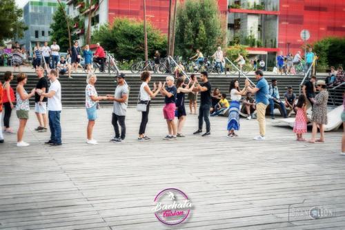 bachata-dock-#317