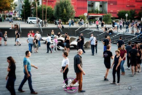 bachata-dock-#43